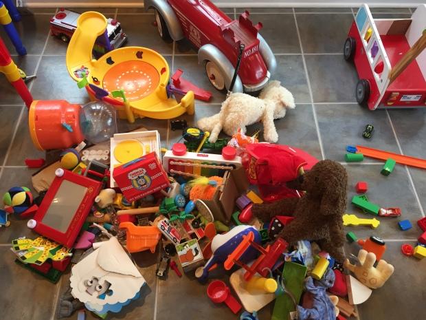 toy-dump